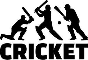 cricket word