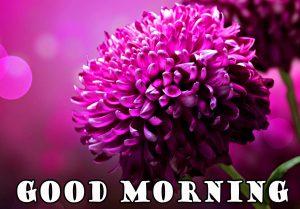 flower-good-morning-image