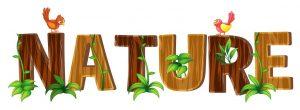 nature art word