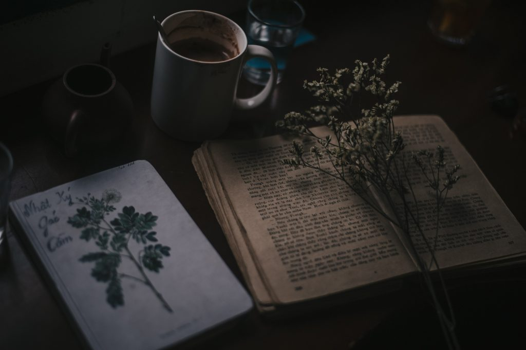 love books captions