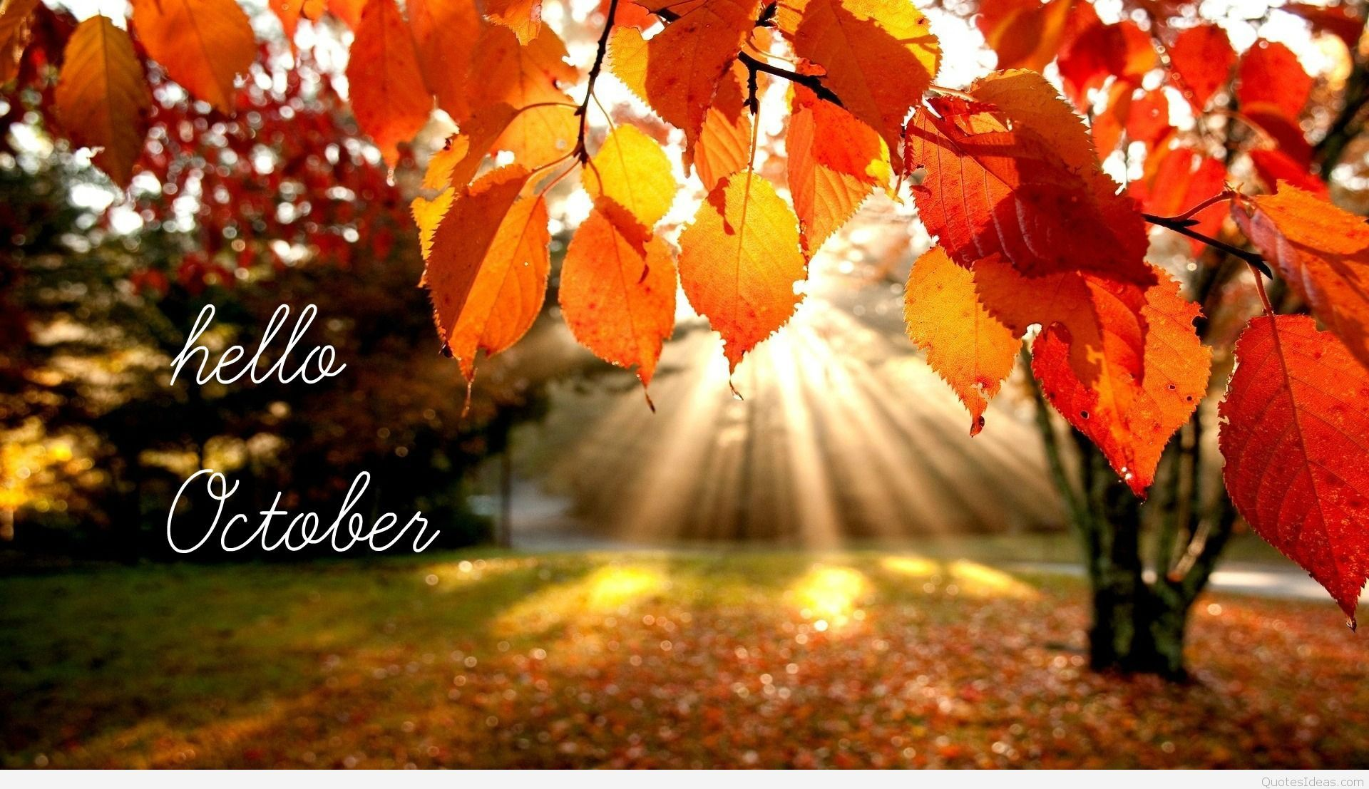 inspirational october quotes for instagram