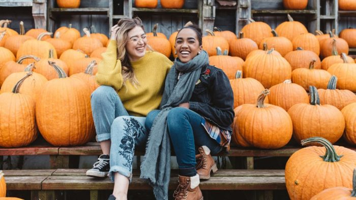 Best Pumpkin Quotes and Puns For Instagram