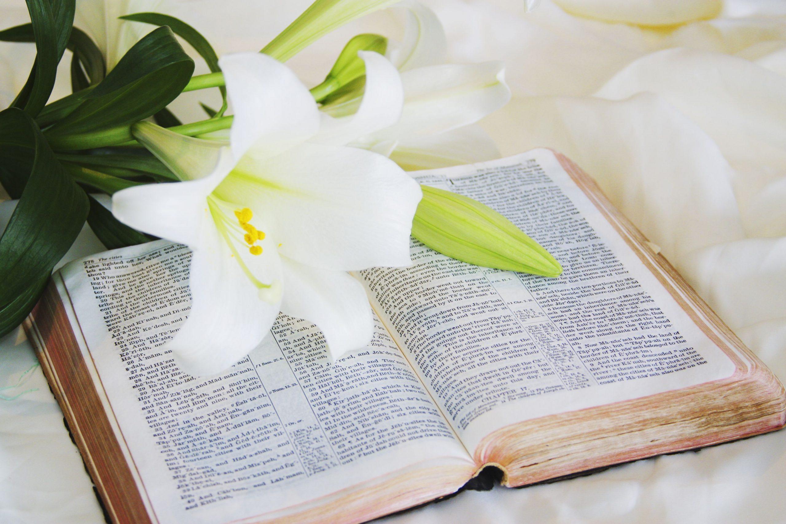 Best Easter Bible Verses