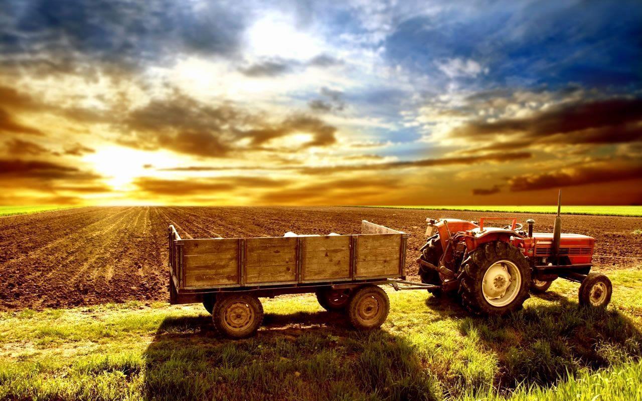 Best Farm Quotes