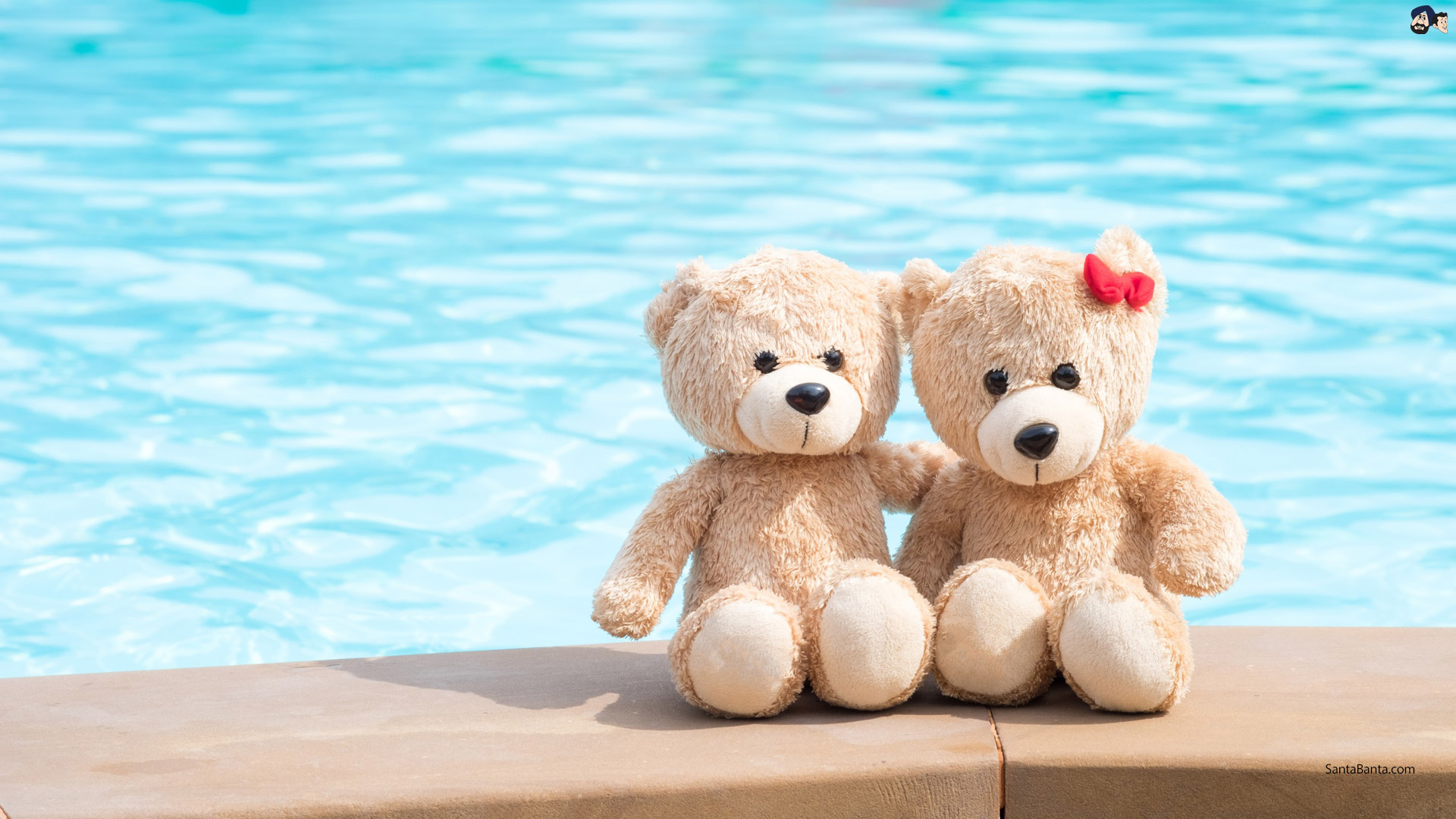 Best Teddy Bear Captions For Instagram