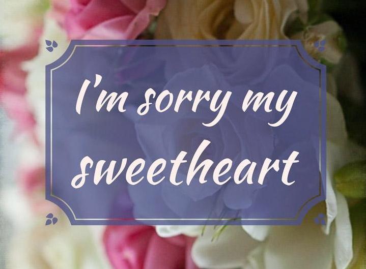 40+ Best Impressive Sorry Status For Boyfriend | Captionsgram
