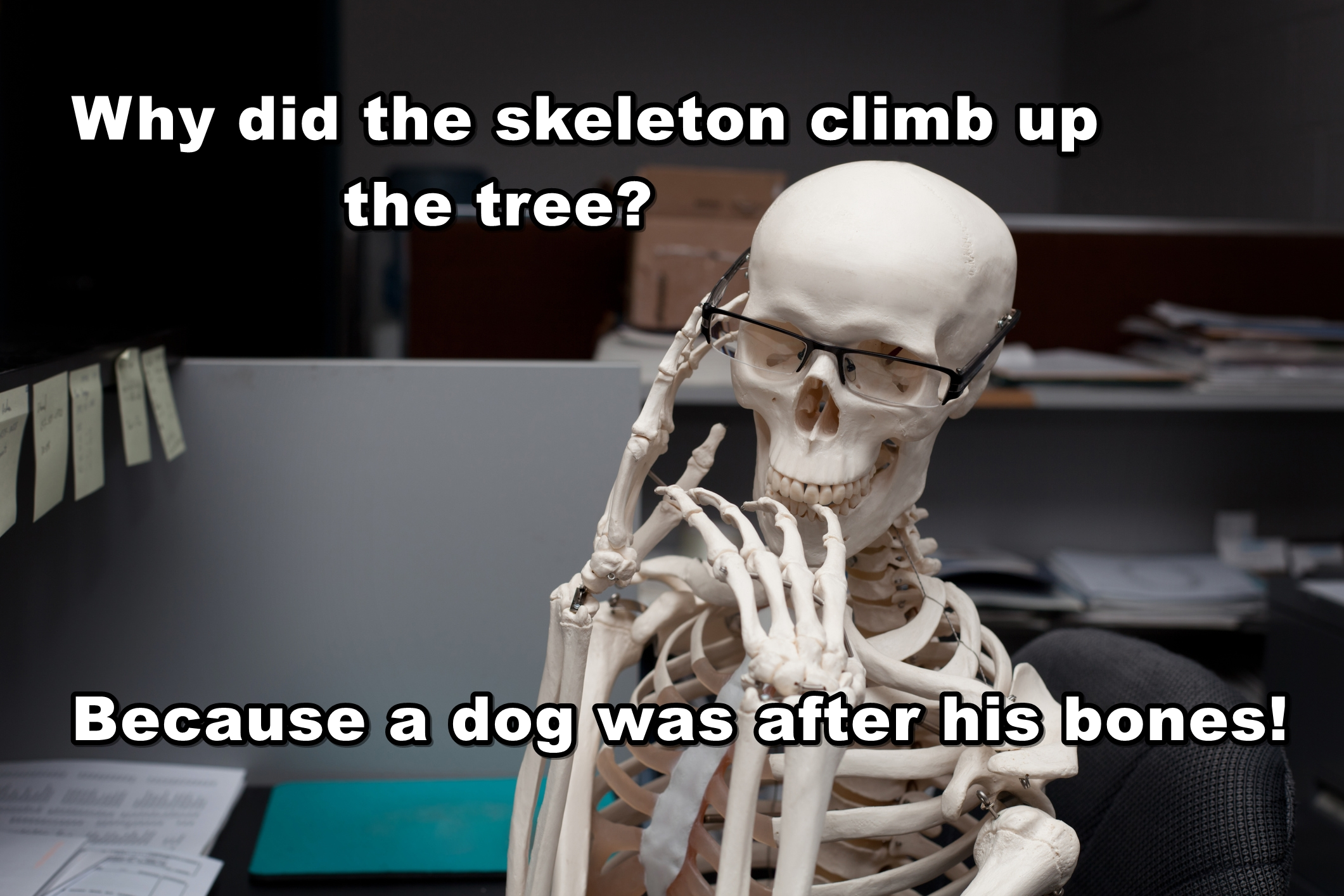 best-skeleton-puns