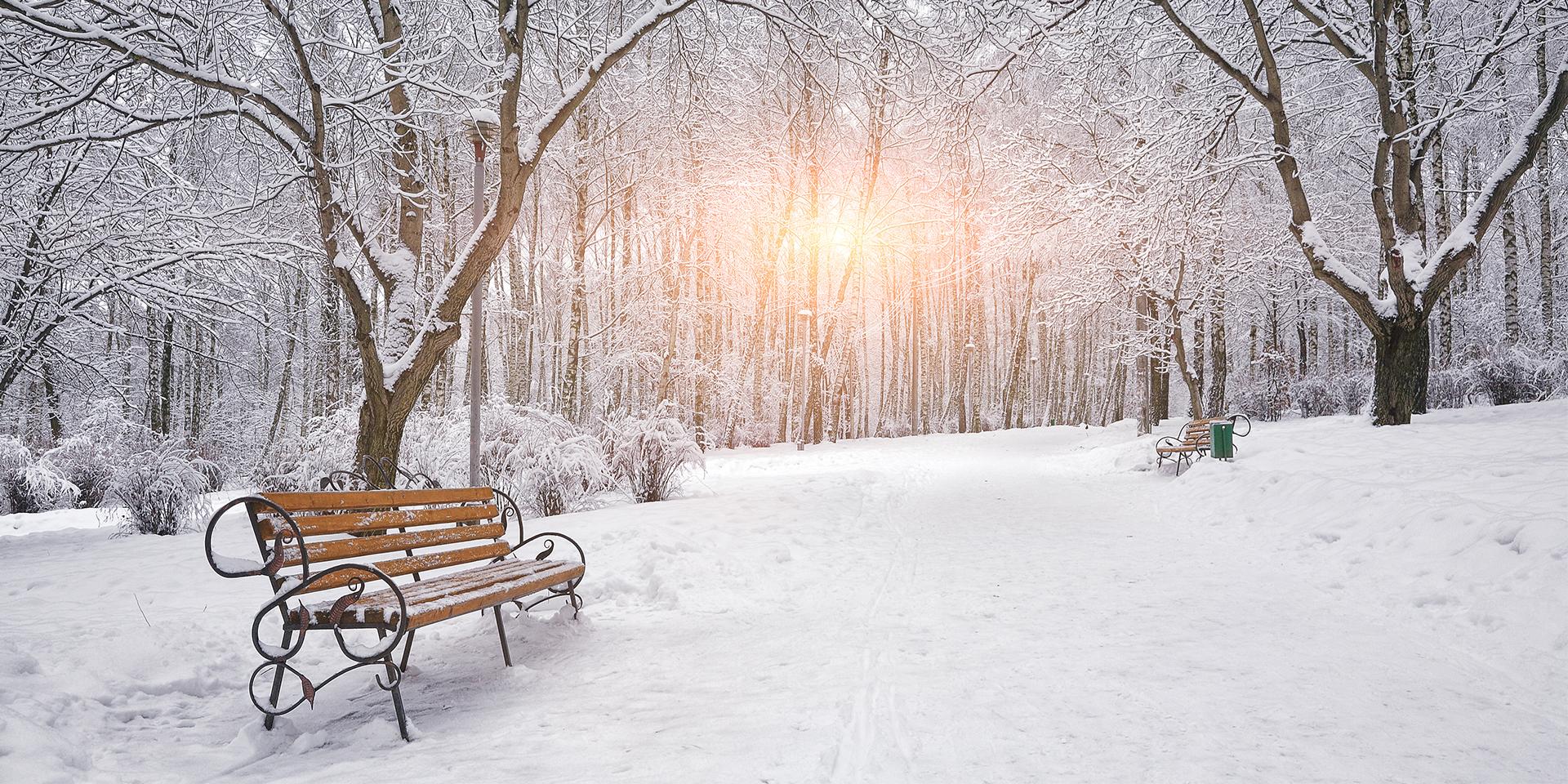 Cool Winter Puns