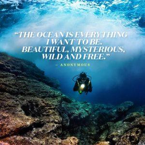 Scuba Diving Captions