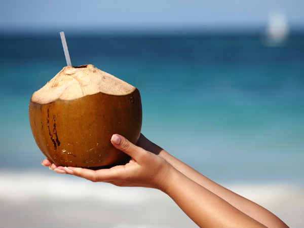 Coconut Captions For Instagram
